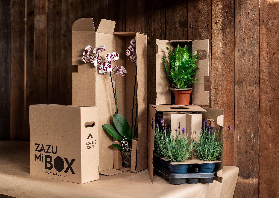 Zazumi box a balení rostlin