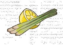 Bio Citrónová tráva, Cymbopogon citratus, v květináči-2522