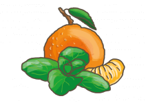 Bio Máta mandarinková, Mentha piperita Tachi, v květináči-2533