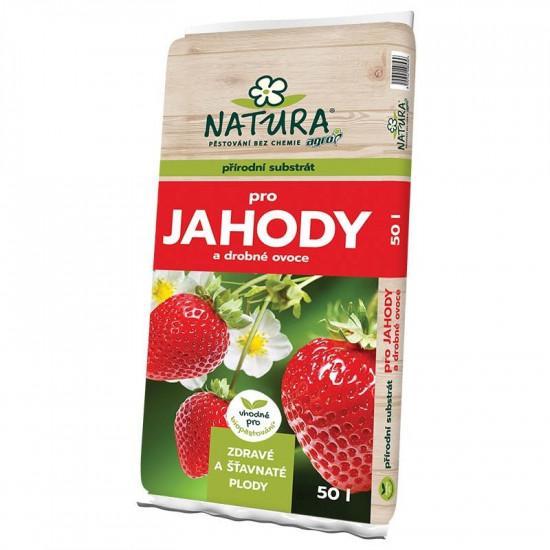 NATURA Substrát pro jahody a drobné ovoce 50l-1772