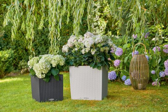 Samozavlažovací květináč Lechuza CUBE Cottage 30, komplet set, žulová šeď-1413