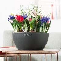 Samozavlažovací květináč Lechuza CUBETO Stone 30, komplet set, černý-2668