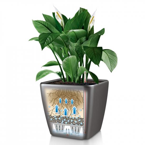 Samozavlažovací květináč Lechuza QUADRO LS 35, komplet set, stříbrný-3038