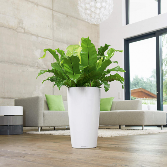 Samozavlažovací květináč Lechuza RONDO 32, komplet set, bílý-3101