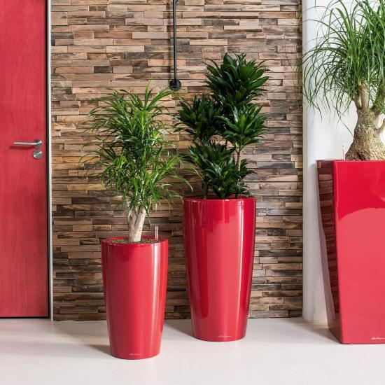 Samozavlažovací květináč Lechuza RONDO 40, komplet set, červený-3107