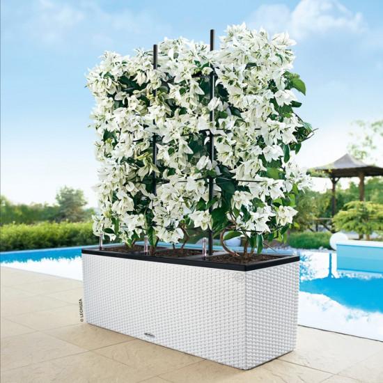 Truhlík BALCONERA TRIO 100cm komplet set bílá-1356