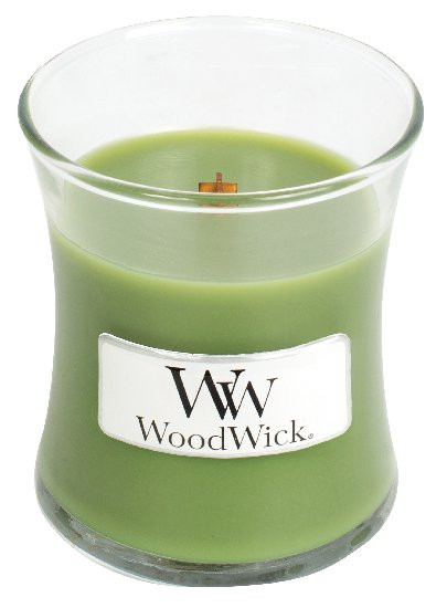 WW svíčka sklo1 Evergreen-971