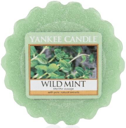 YANKEE vosk Wild Mint-3243