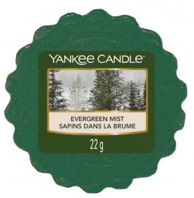 Aromatický vosk, Yankee Candle Evergreen Mist, provonění až 8 hod