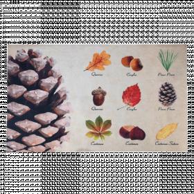 Rohožka s motivem listů a plodů, Esschert Design, plastová, délka 75 cm