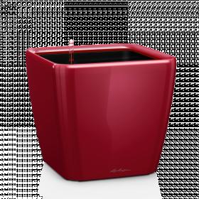 Samozavlažovací květináč Lechuza QUADRO LS 43, komplet set, červený