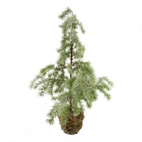 Stromek umělý cedr v mechu