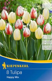 Tulipán cibule, Tulipa Happy, mix barev, balená, 8 ks