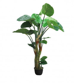 Umělá kolokázie, v květináči, zelená, výška 240 cm