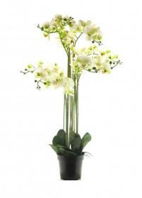 Umělá orchidej Bora, v květináči, 8 výhonů, bílá, výška 110 cm