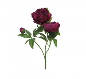 Umělá pivoňka, 3 květy, purpurová, délka 70 cm