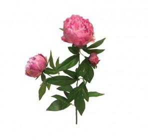 Umělá pivoňka, 3 květy, růžovo - bílá, délka 70 cm