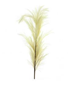 Umělá tráva pampová, krémová, výška 160 cm