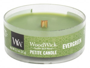 WW PETITE svíčka Evergreen