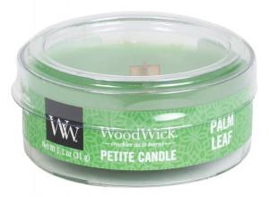 WW PETITE svíčka Palm leaf