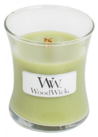 WW svíčka sklo1 Fern