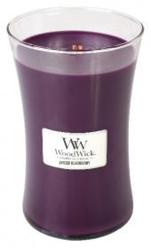 WW svíčka sklo3 Spiced Blackberry