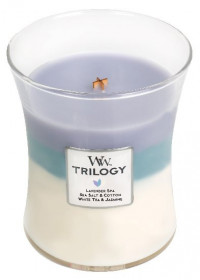 WW TRILOGY svíčka sklo2 Calming Retreat