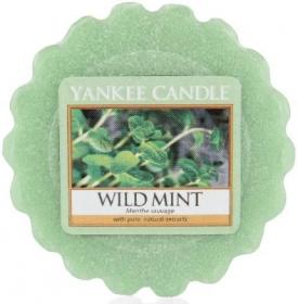 YANKEE vosk Wild Mint