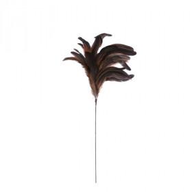 Zápich peří, délka 22cm, hnědá